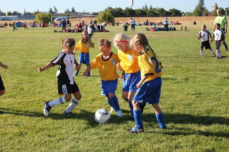 santa rosa united soccer academy