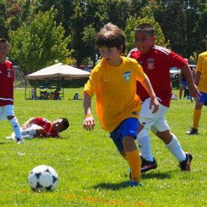 Santa Rosa United Select Youth Soccer - 1